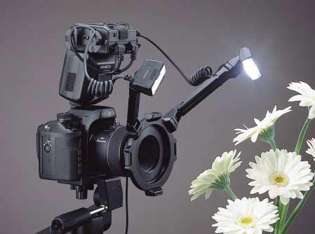 拍微距最好的卡片机_卡片机闪光灯使用技巧,卡片相机摄影知识