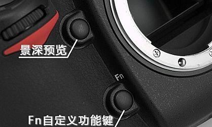 关于微距摄影 如何使用单反相机拍摄微距照片